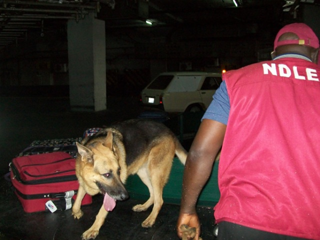 NDLEA sniffer dogs detect heroin from Iran at Lagos airport