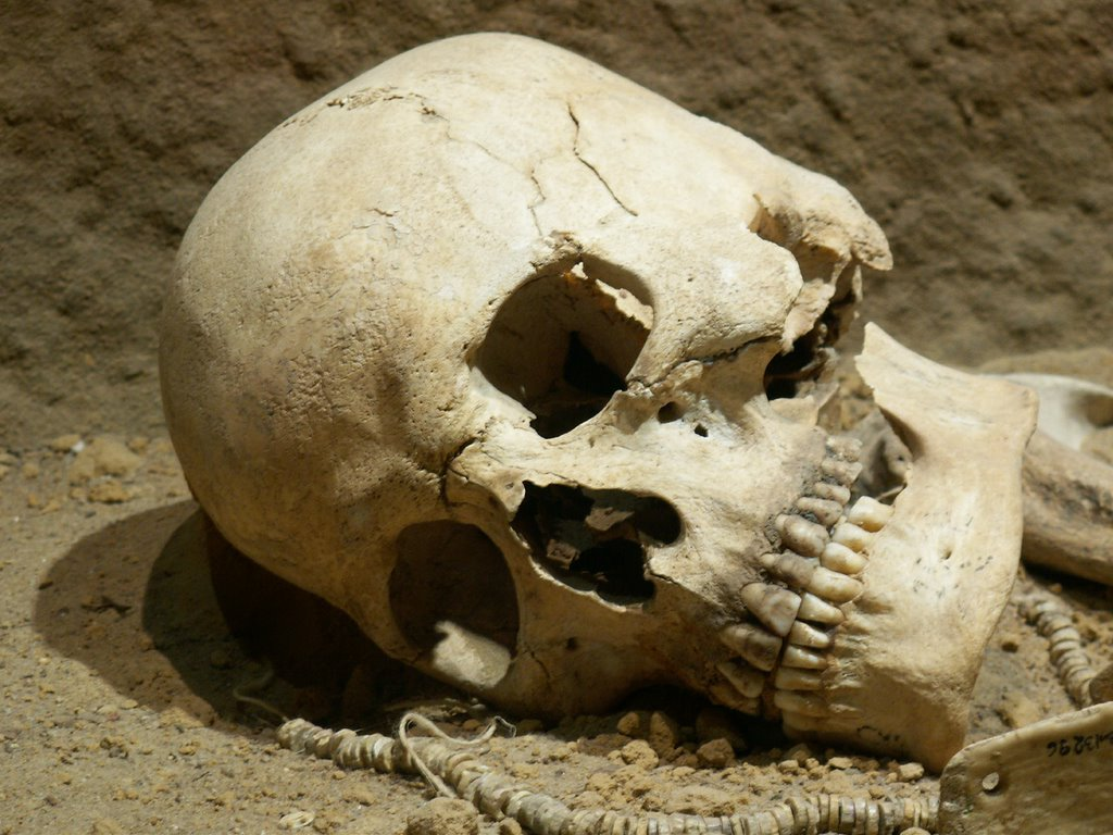 Police arrest two men with human skull in Abeokuta