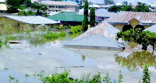 Over 10,000 people displaced in Kogi, Benue flood-NEMA