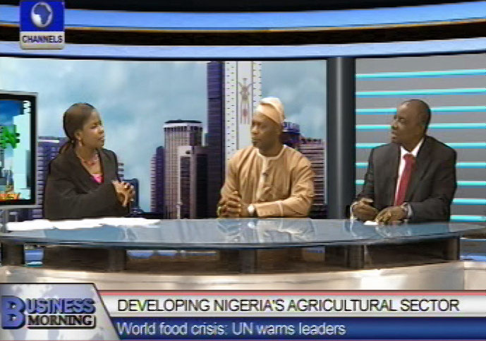 Professor of Agriculture says population is outgrowing food production in Nigeria