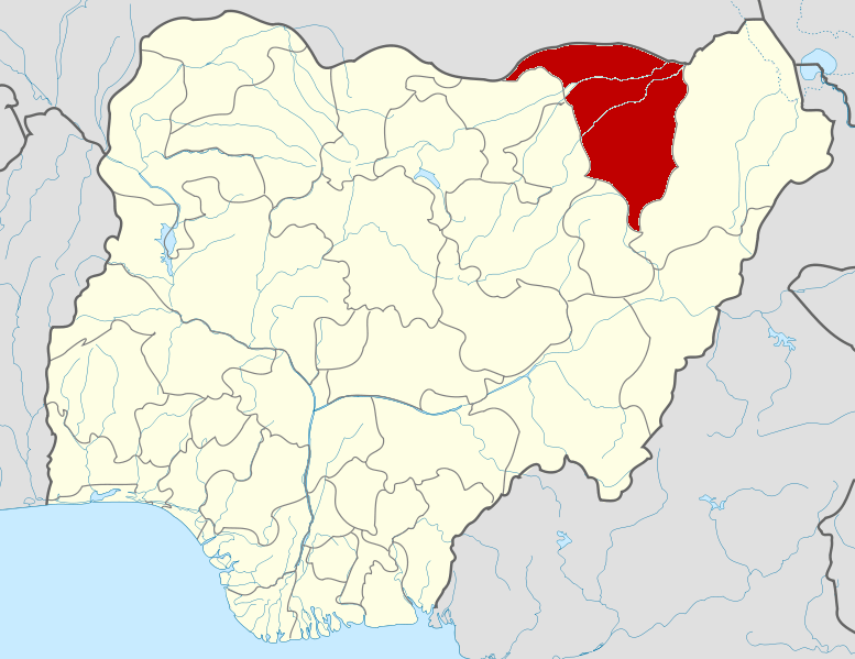 Constitution amendment: Yobe rejects state creation at public hearing