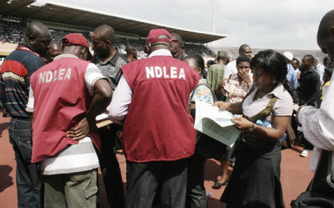 NDLEA Arrests 114 Suspects With 517.2kg Of Drugs In Niger