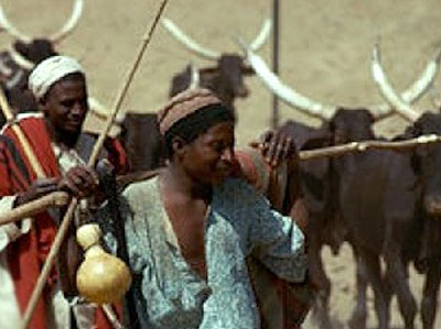 Fulani Herdsmen attack community in Ogun, Slay Farmer