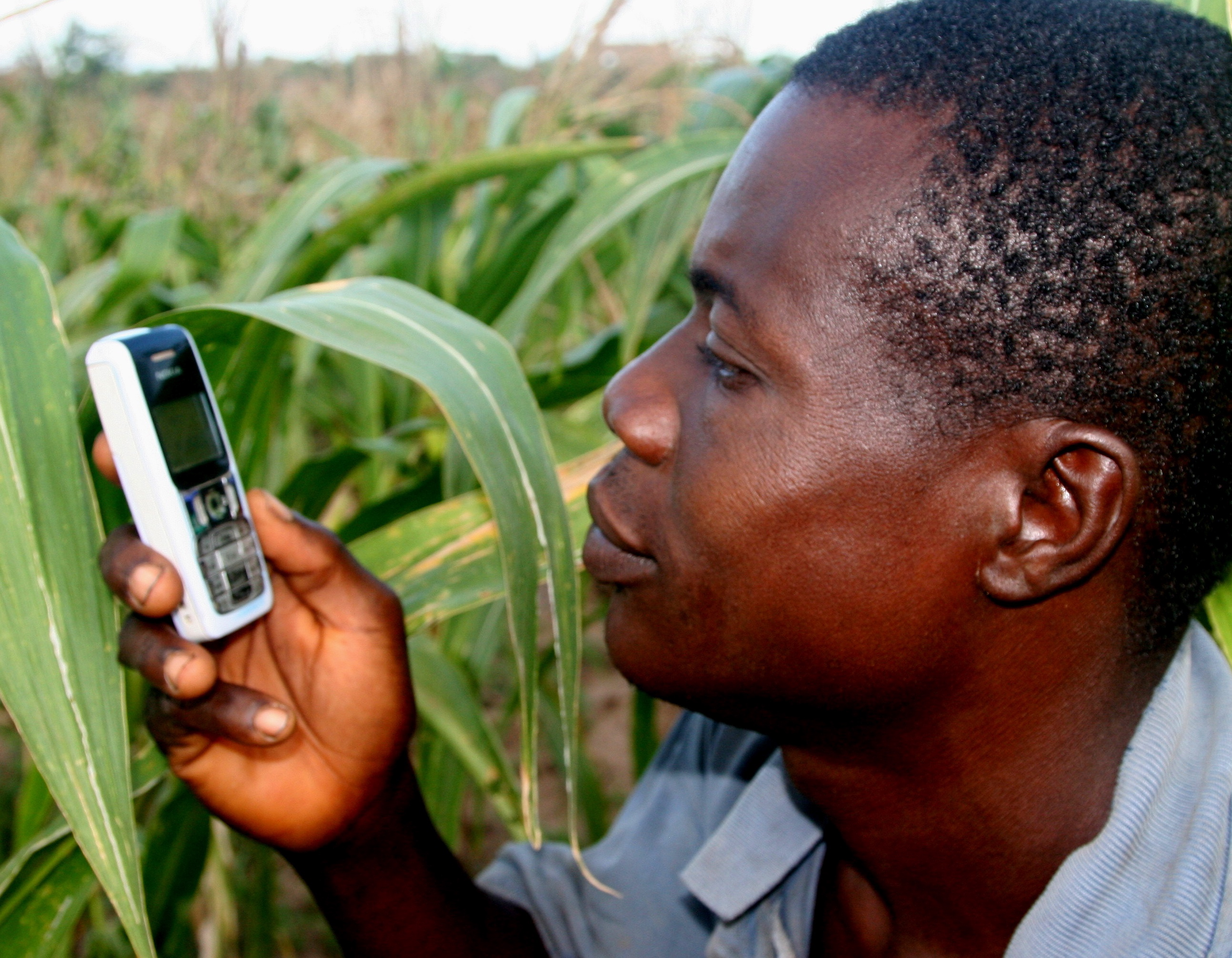 Minister Insists On Buying GSM Phones For Farmers