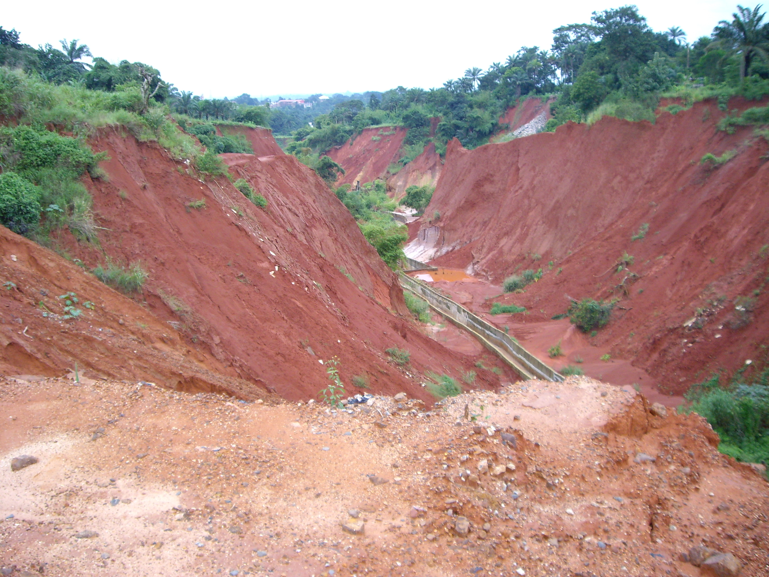 FEC Set Up Committee On South East Erosion