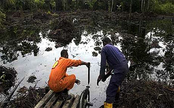 Shell Threatens Operation Shut Down Due To Increasing Oil Theft