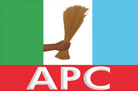 VIDEO: APC Fails To Agree On Party's Executive Committee