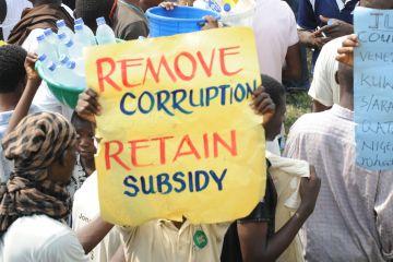 Senate Warns PPPRA Over Return Of Subsidy Fraudsters