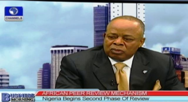African Peer Review: Nigeria Has Made Progress In Electoral Process – Nnamani