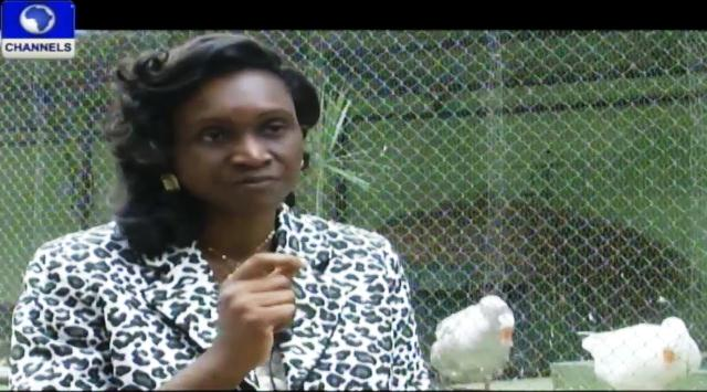 Animal, Plant Conservation Would Boost Nigeria's Tourism – Experts
