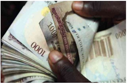 ECOWAS Countries Optimistic Of Single Currency By January 2015