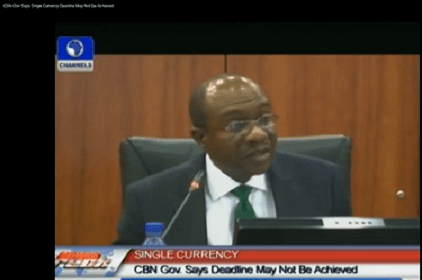 CBN Gov Says ECOWAS Single Currency Deadline May Not Be Achieved