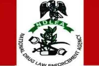 NDLEA Embarks On Drug Demand Reduction Through Quiz Competition