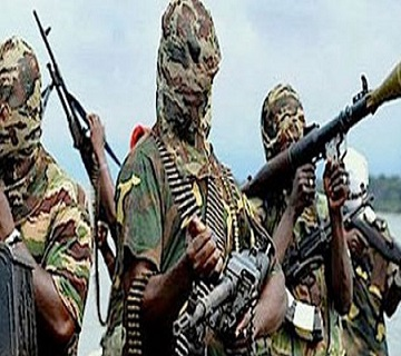 Borno Elders Doubt If Ceasefire Agreement Is With Genuine Boko Haram Leadership