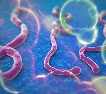 Lagos Records Five New Ebola Cases