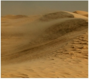 desert_Encrochment