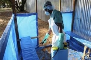 ebola t