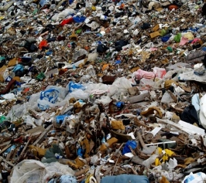 Waste, Environment