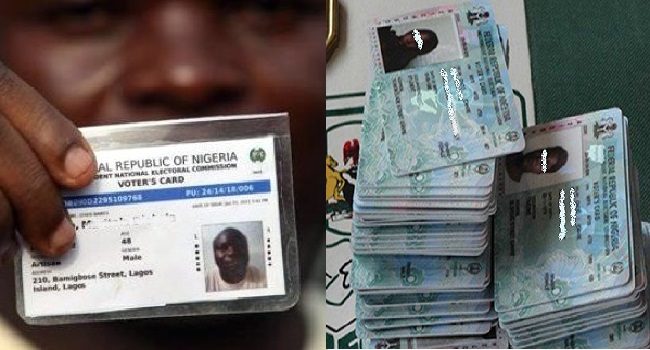 PVC Distribution: INEC Achieves 81.2% Collection Rate
