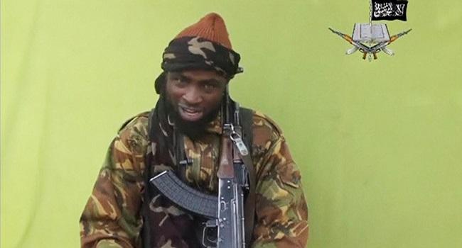 Boko Haram Remote-Control Bomb Kills Two Niger Soldiers