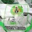 inec-Voter Education