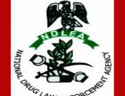 obiano, NDLEA, drug war, Anambra