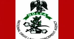 NDLEA Explains Why Buruji Kashamu Is Under House Arrest