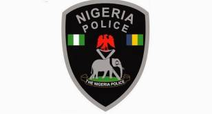 19-Year-Old Apprehended For Possessing Firearms In Taraba