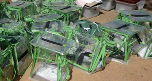 Ballot Boxes in Nigeria's elections