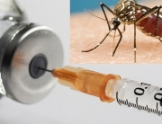 Laboratory Scientists Commit To Eradication Of Malaria In Nigeria