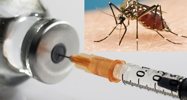 Kenya Becomes Third Country To Adopt World's First Malaria Vaccine