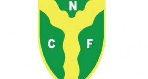 female-cricket-championship