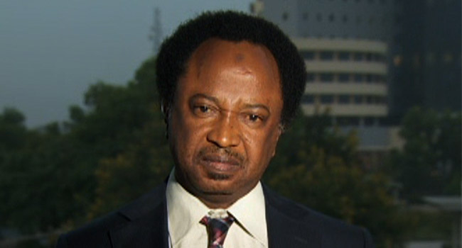 Shehu Sani Urges Buhari To End Amnesty Program For Ex-Militants
