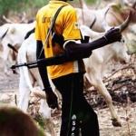 herdsmen, kaduna killings, Godogodo village