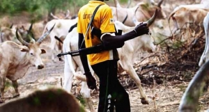 Delta Police Debunk Claims Of Herdsmen Attack In The State