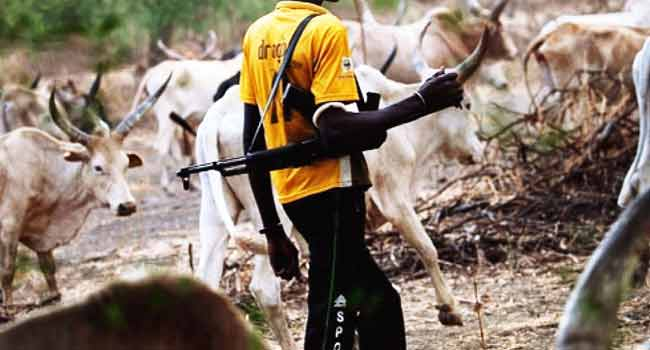 Fayose Bans Public Grazing, Cattle Rearing In Ekiti State