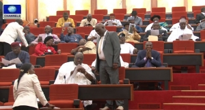 Nigerian Senate on MTEF and FSP