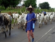 Suspected Herdsmen Kill Two Persons In Benue