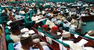 House of Representatives on Diaspora Bond