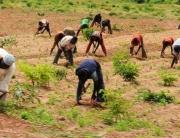 Benue Police Challenge Farmers, Herdsmen On Agatu Peace Deal
