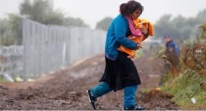 migrants7