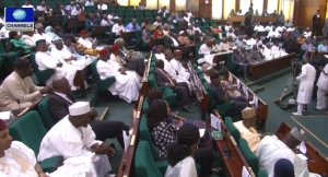 House of Representatives, social intervention fund, Reps