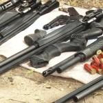 Guns-Arms
