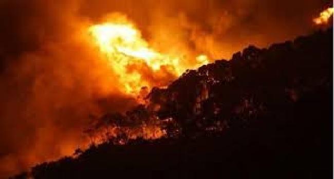 Christmas Day Blaze Guts Australia Homes