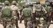 JTF Recovers Rustled Cows From Suspected Benue Gang Leader