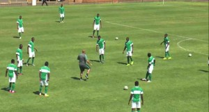 Super Eagles, World cup qualifier