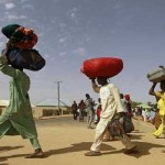 IDP camps, Yobe Government