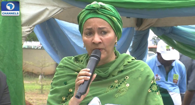 Amina Mohammed, Renewable Energy, Jatropha