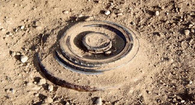 Landmines Kill 15 In Borno