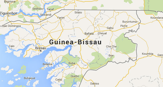 Guinea Bissau Names New PM In Pre-Election Crisis